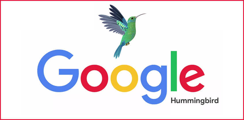 Hummingbird Most Used word after Not Provided Data in Search Market